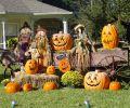 Transportation For Family Halloween